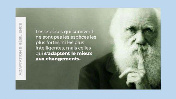 Darwin Résilience
